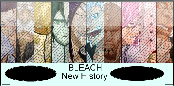Bleach New History