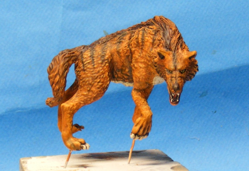 Shauna and the wolf  : DRACONIA miniatures 54mm 00122