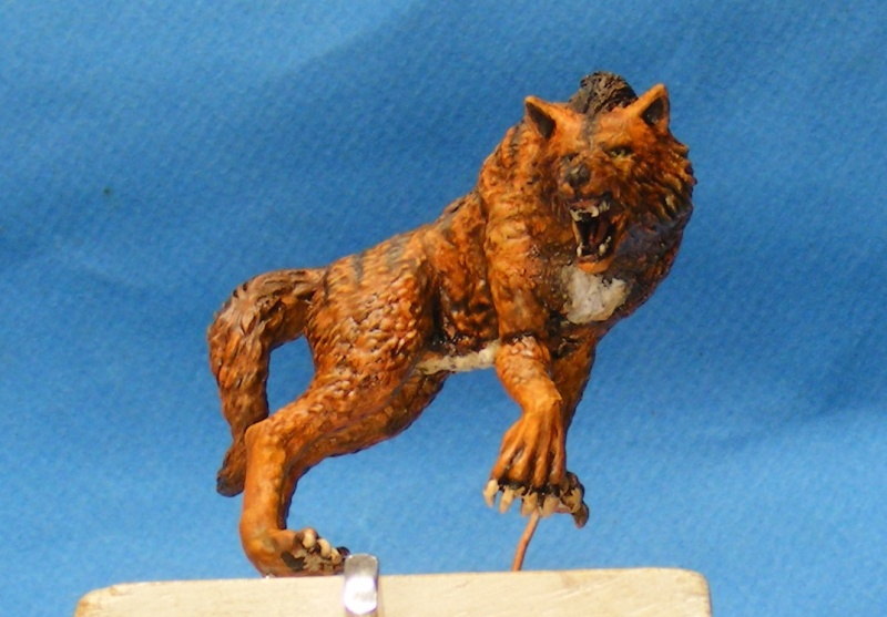 Shauna and the wolf  : DRACONIA miniatures 54mm 00123