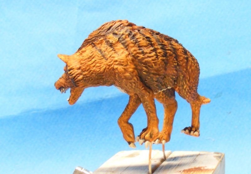 Shauna and the wolf  : DRACONIA miniatures 54mm 00222