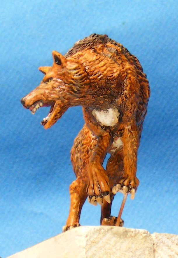 Shauna and the wolf  : DRACONIA miniatures 54mm 00223