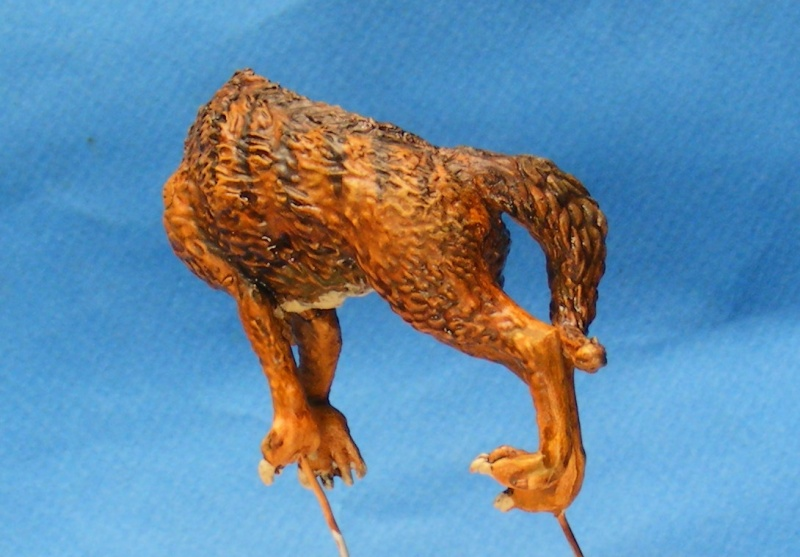 Shauna and the wolf  : DRACONIA miniatures 54mm 00322