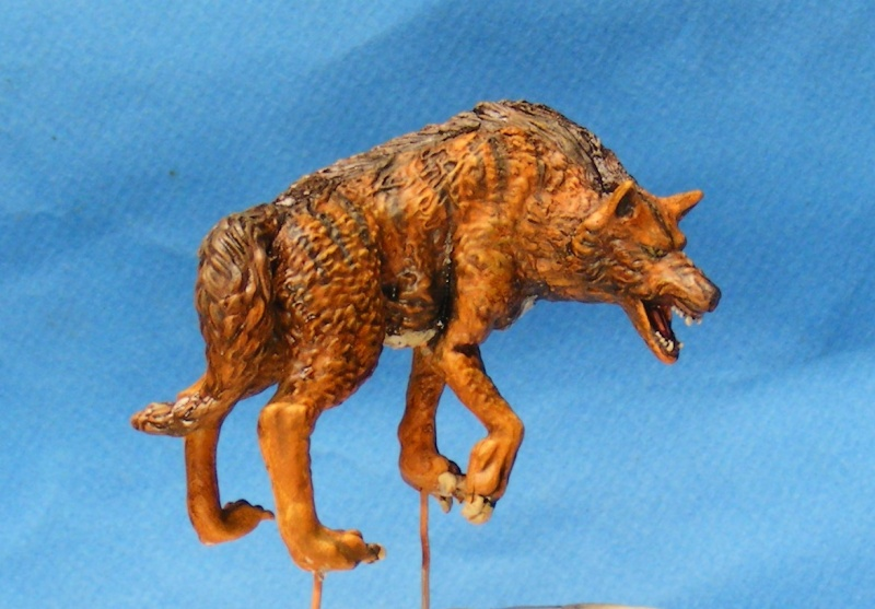 Shauna and the wolf  : DRACONIA miniatures 54mm 00417