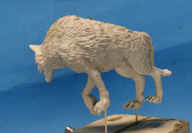 Shauna and the wolf  : DRACONIA miniatures 54mm 00513