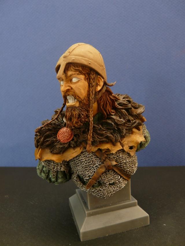 Viking en colère P1060919