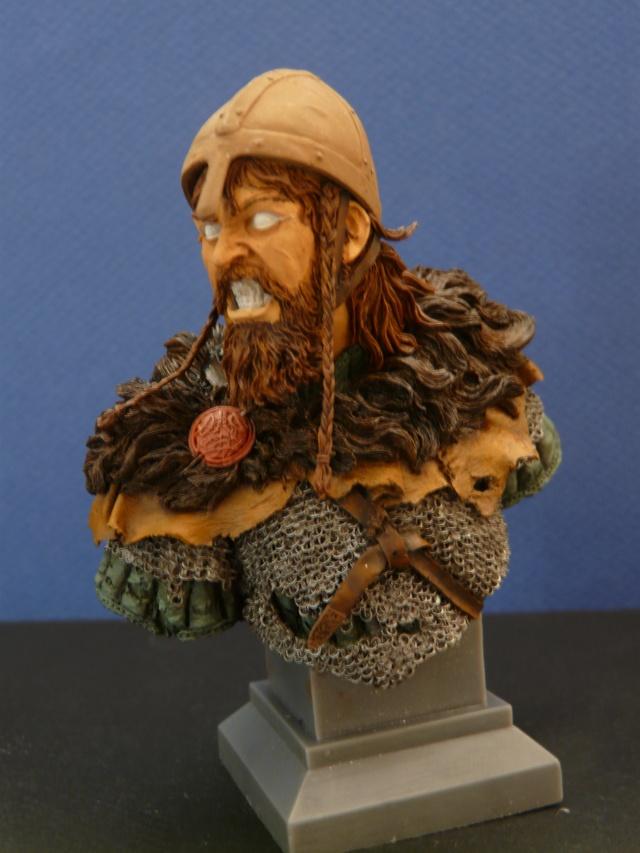 Viking en colère P1060921