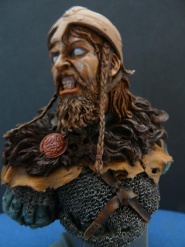 Viking en colère P1070012