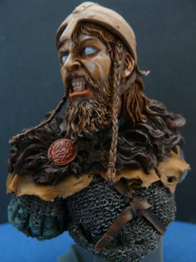 Viking en colère P1070013