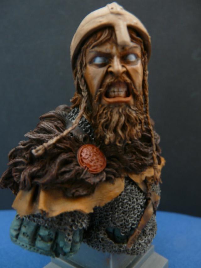 Viking en colère P1070015