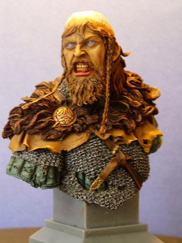 Viking en colère P1070412