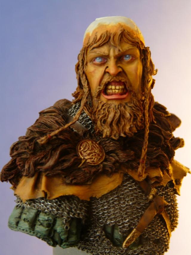 Viking en colère Vik_0011