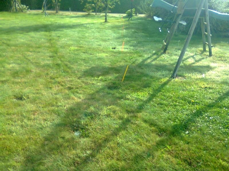 4500/30 idéal pour desherber la pelouse ! Photo016