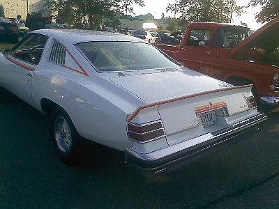I own a 73 monte 08291011