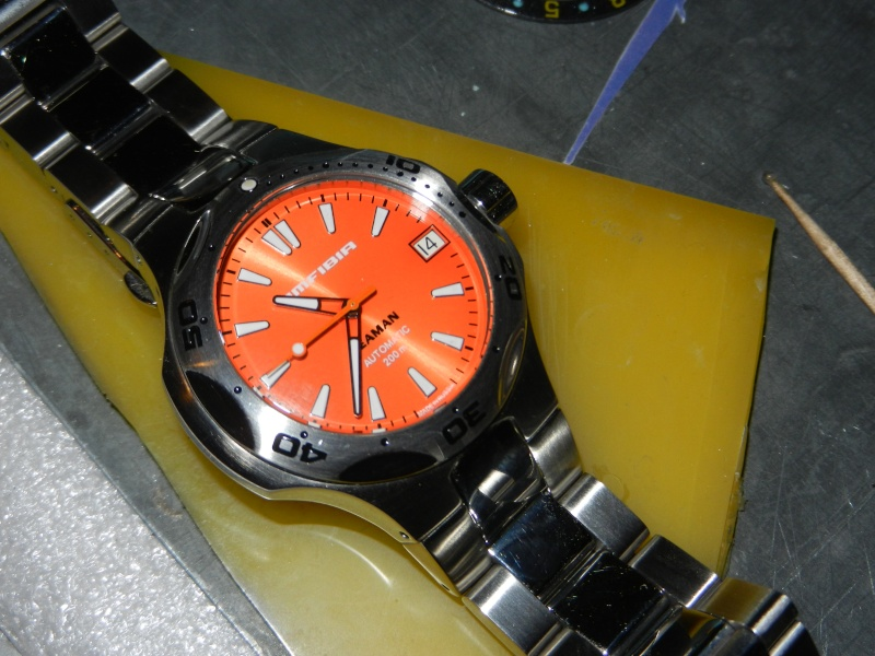 VOSTOK AMFIBIA SEAMAN ORANGE Dscn9712
