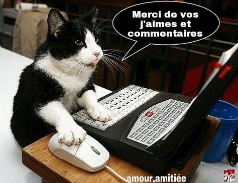 """Remorqueur fluvial """"Jacques""""  au 1/25 - Page 16 Merci_12"""