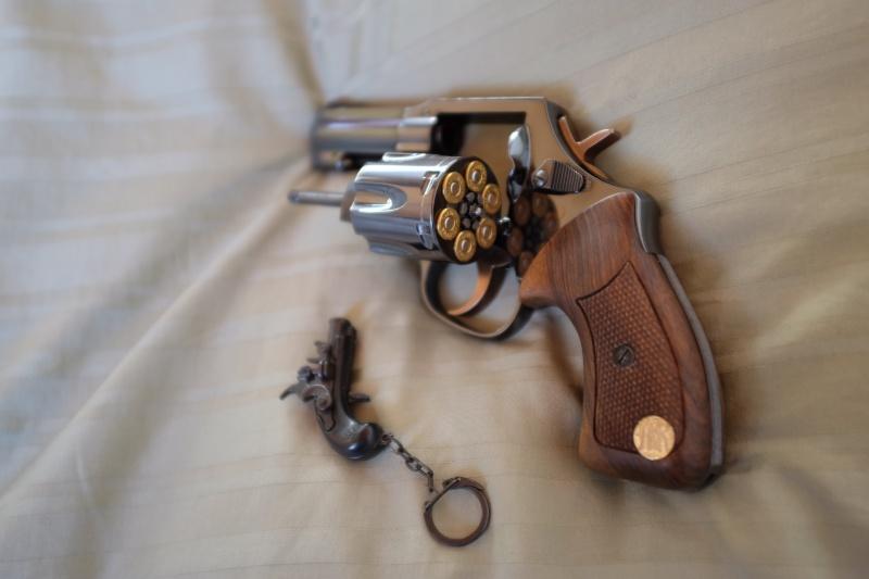 Type de munition autorisée qui ne sur-pénètre pas - Page 4 Dscf5016