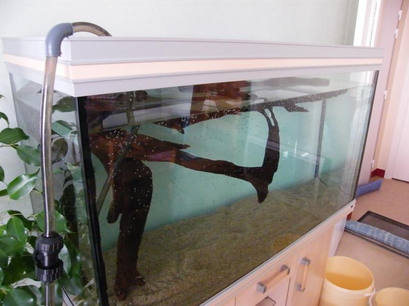 vends aquarium RENA 360l 00111