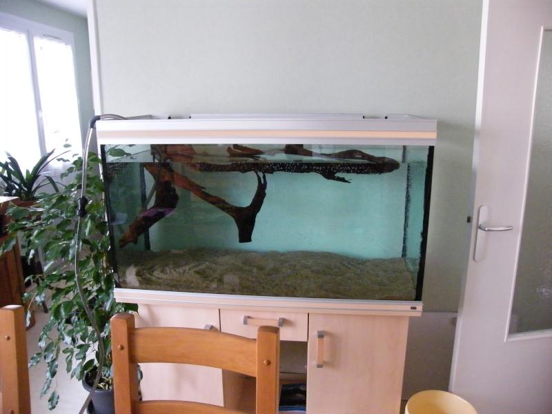 vends aquarium RENA 360l 00310