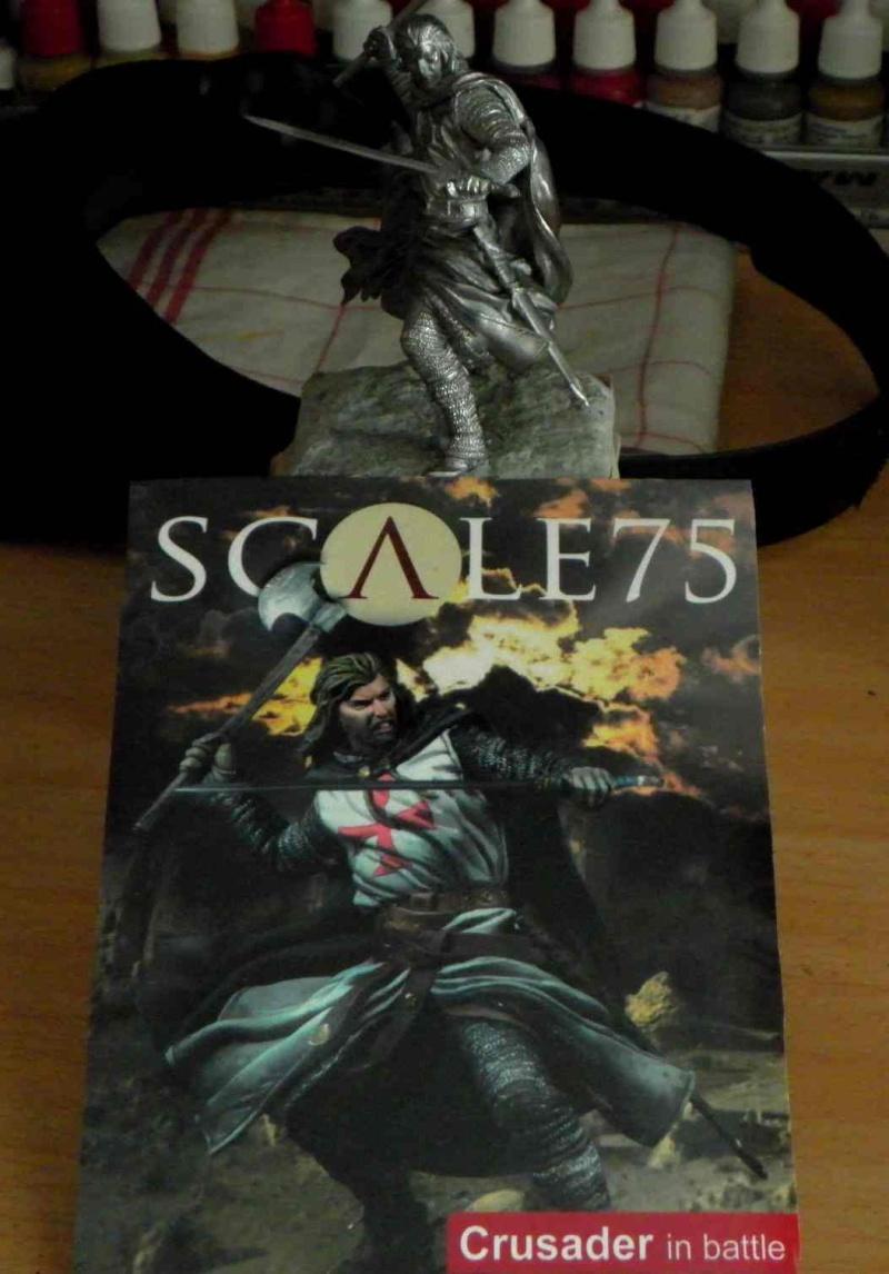 Olivier de Termes (Scale75) Sam_5319