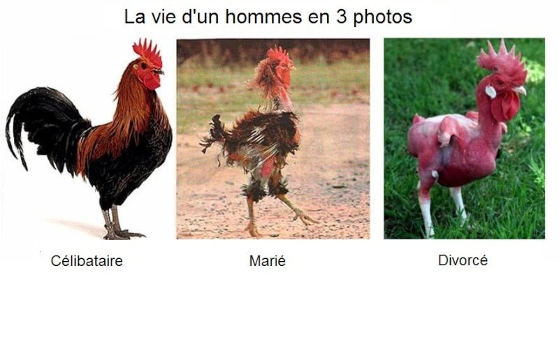 Homme vs Femme Image011