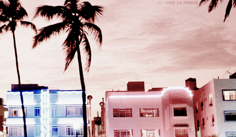 | Remember the Summer Miamis11