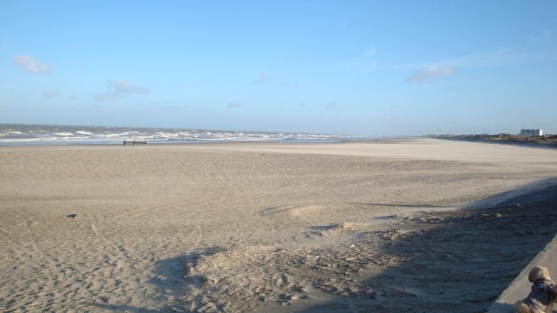 Les nouvelles de Ostende  Dsc03918