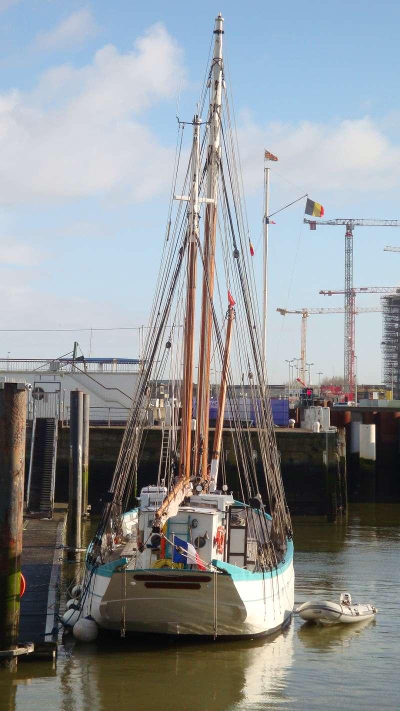Les nouvelles de Ostende  - Page 3 Dsc04010