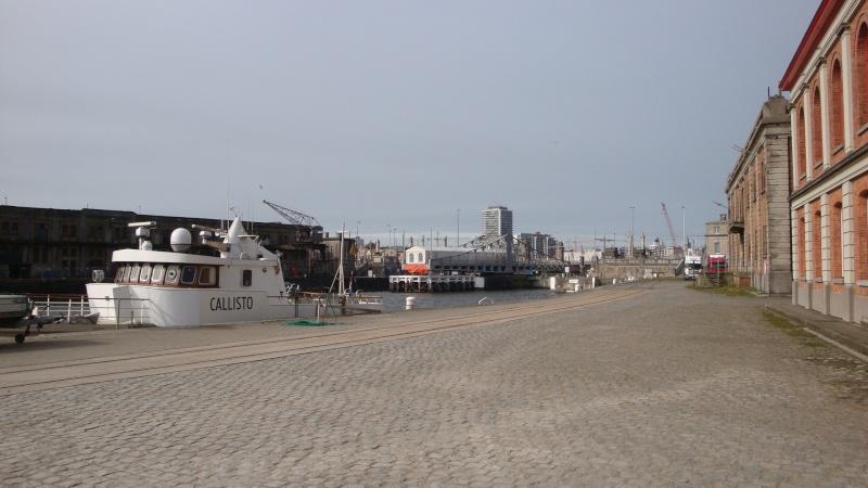 Les nouvelles de Ostende  - Page 6 Dsc04044