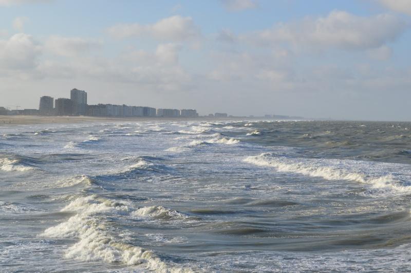 Les nouvelles de Ostende  Dsc_0011