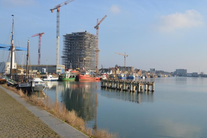 Les nouvelles de Ostende  - Page 2 Dsc_0056