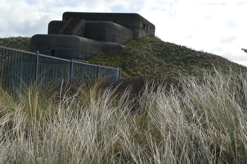 Bunker .147 - Page 5 Dsc_0208