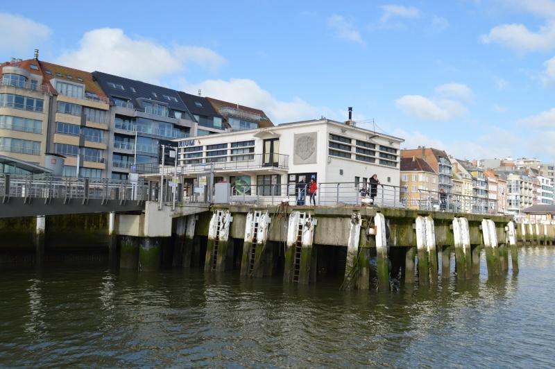 Les nouvelles de Ostende  - Page 4 Dsc_0228