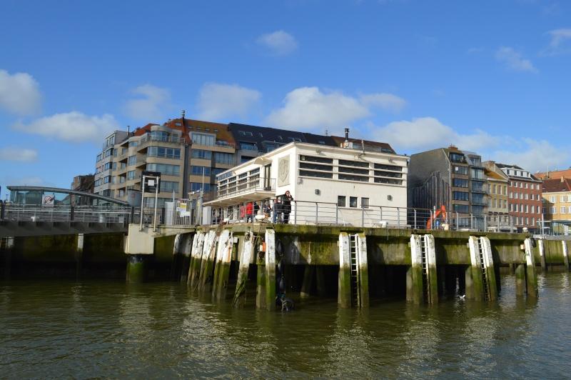 Les nouvelles de Ostende  - Page 4 Dsc_0229