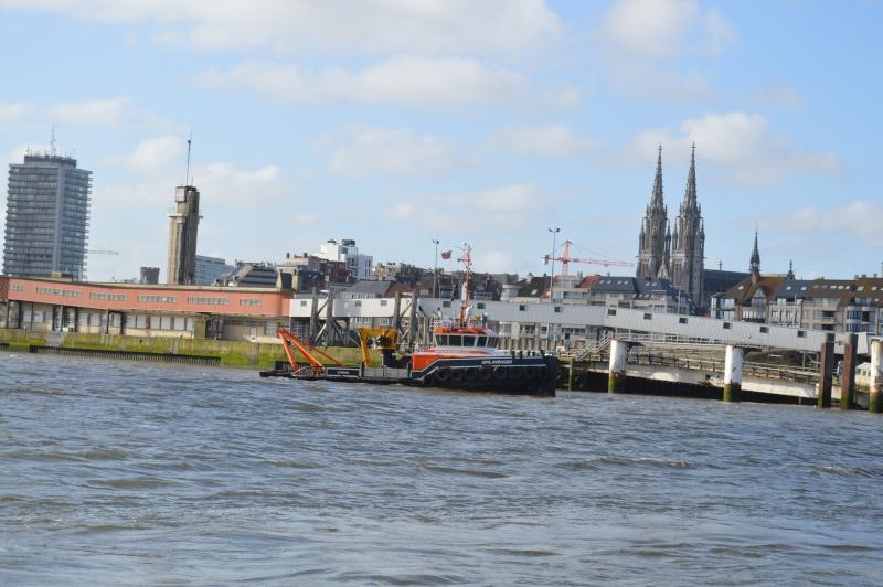 Les nouvelles de Ostende  - Page 4 Dsc_0235