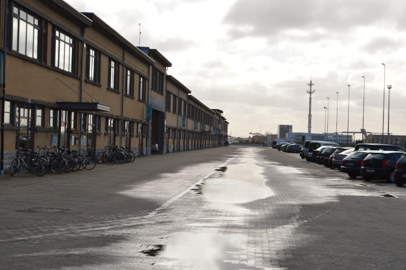 Les nouvelles de Ostende  - Page 5 Dsc_0239