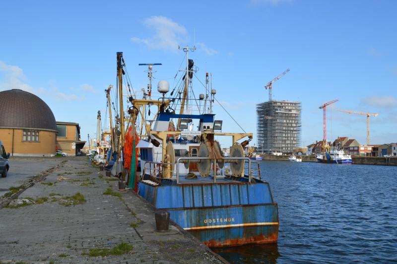 Les nouvelles de Ostende  - Page 5 Dsc_0242
