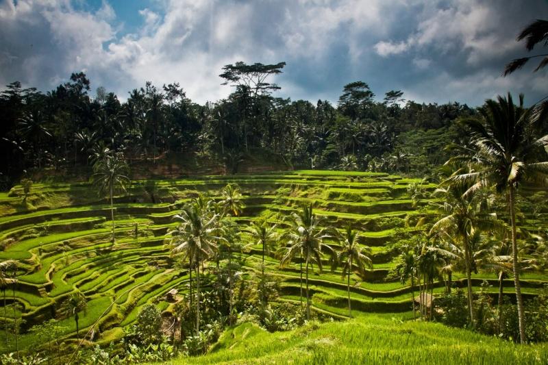 Rêver avec le réel, paysages - Page 10 Bali10