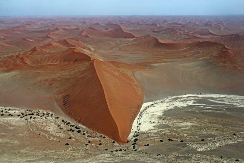 Rêver avec le réel, paysages - Page 11 Namib_10