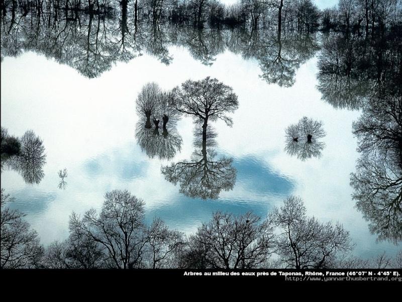 Rêver avec le réel, paysages - Page 12 Rhyne10