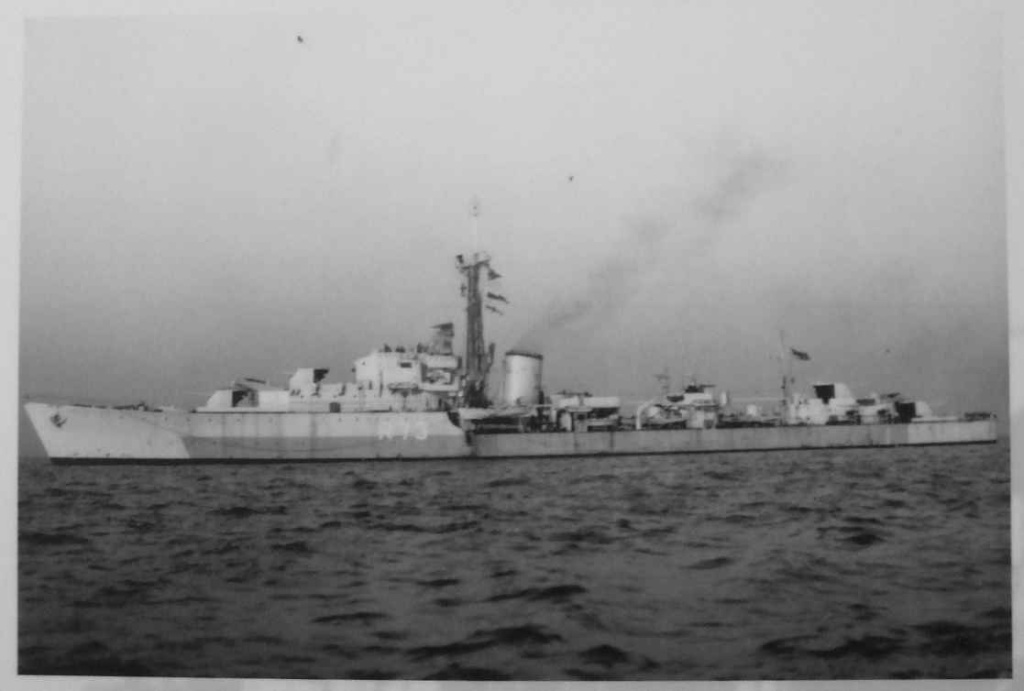 DESTROYER DE LA ROYAL NAVY : du CAESAR au DUCHESS Cavali10