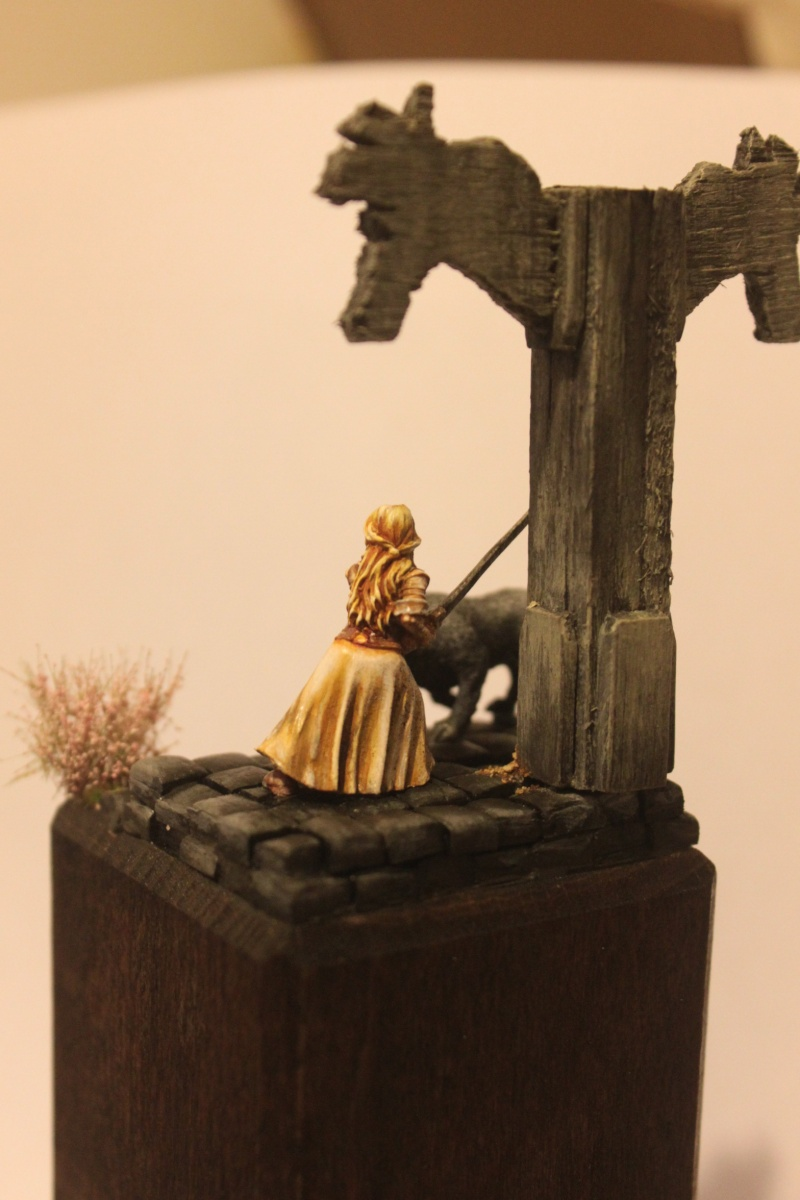 Eowyn Dame du rohan Img_8813