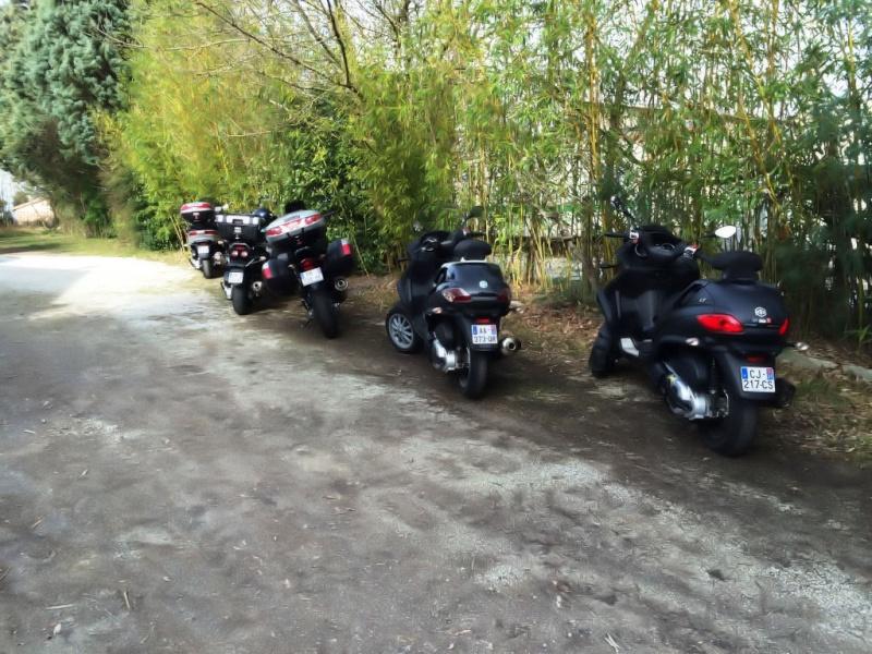 CR sortie Team Sud Ouest Balade au Lac de St Ferréol Montagne noire Img_6610