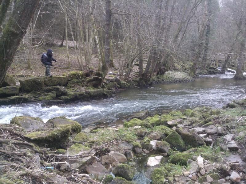 Pêche de la truite en rivière (vosges). Wp_00011