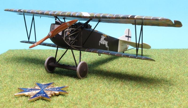Fokker D.VII (Alb.) - Carl Degelow - 1/48 Roden - NOW WITH FIGURES Img_4710