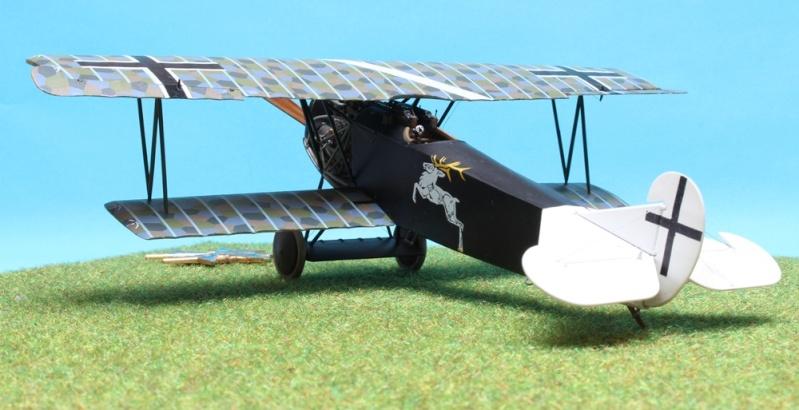 Fokker D.VII (Alb.) - Carl Degelow - 1/48 Roden - NOW WITH FIGURES Img_4714
