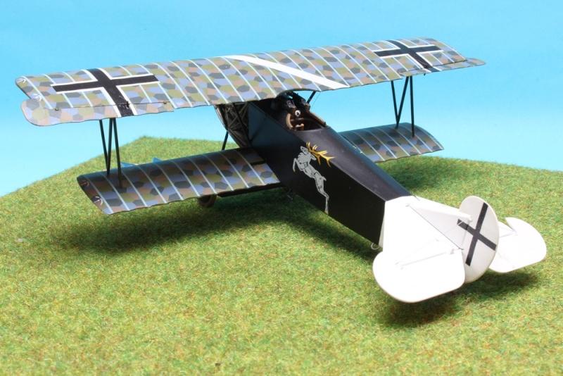 Fokker D.VII (Alb.) - Carl Degelow - 1/48 Roden - NOW WITH FIGURES Img_4715