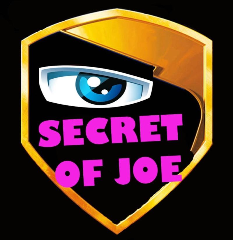 Petits Secret de Gi joe (PSG) - Page 8 Joe_st14