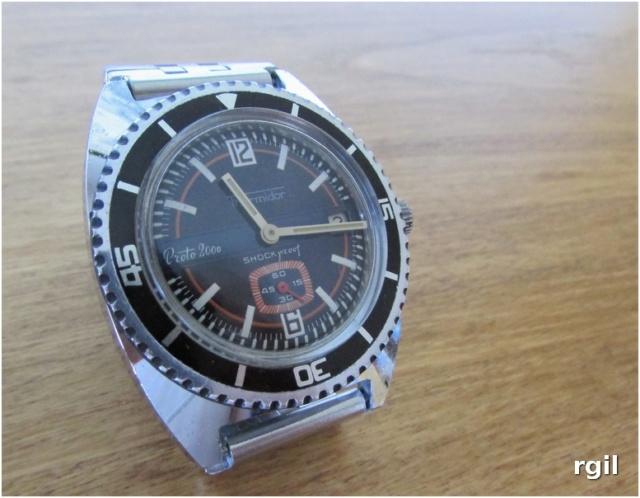 Votre montre du jour - Page 8 Thermi11