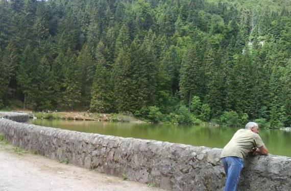La Schlucht - Le Tanet - Lac vert - Lac des Truites - Gazon du Faing - GR5 - La Schlucht 38690310