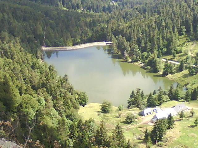 La Schlucht - Le Tanet - Lac vert - Lac des Truites - Gazon du Faing - GR5 - La Schlucht 40630810
